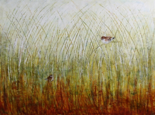 "Anna Koot ""I See You"" Paint Ontario 2015 Wildlife Award"