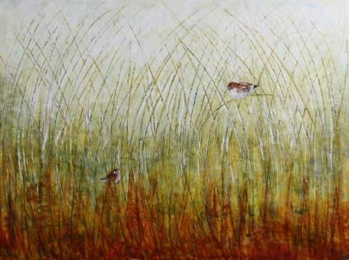 """Anna Koot """"I See You"""" Paint Ontario 2015 Wildlife Award"""